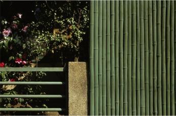 Eckhard Kremers 1979 Tsubaki Tokyo [椿東京]